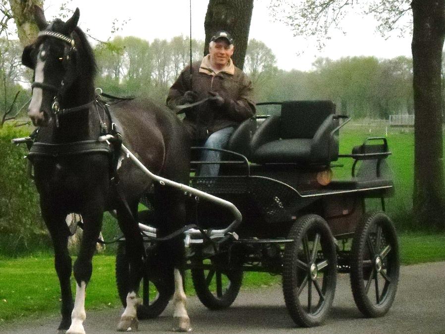 veiling-rit-met-paard-en-wagen
